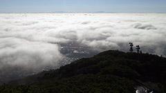 札幌都心覆う雲海 藻岩山から絶景