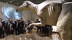 大地の神秘を体感 北海道博物館でジオパーク展